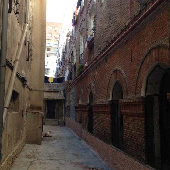 Foto Alley 2